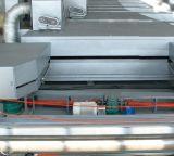 Máquina plástica para Geogrid