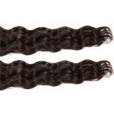Prolonge de trame de cheveux humains de Vierge de Remy de bande de cheveux humains des extensions 16 de couleurs de bande de peau brésilienne brésilienne de l'adhésif 20PCS/Pack