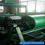 Bâche de protection verte en plastique de PE de la Chine