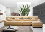 Conjuntos caseros modernos del sofá del cuero de los muebles de la sala de estar (HX-FZ042)