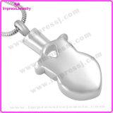 Ceneri dell'acciaio inossidabile nel pendente del gufo dei monili con i cristalli Ijd9637