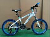 Estoque para 20 Inch Montanha Bicycle&#160 da bicicleta de MTB; Bicicleta de montanha