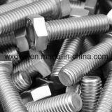 Boulon principal d'hexagone avec la pleine usine d'amorçage d'OIN 4017 de la vis 304 d'acier inoxydable de la Chine