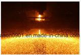 Отрежьте съемку /Steel съемки /Stainless съемки провода отрезока /Stainless Teel /Stainless съемки провода
