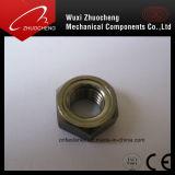 Grand dos d'acier inoxydable/noix Hex DIN928 DIN929 de soudure