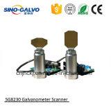 Galvo 소형 Laser 조각 기계를 위한 가죽 조각 Laser Sg8230