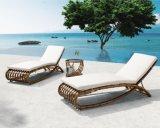 Le divan sectionnel de patio de sofa moderne de meubles a placé avec des meubles de rotin de PE