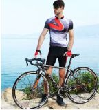 700c熱い販売の自転車