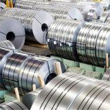 316L aplicó la bobina del acero con brocha inoxidable