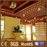 世帯およびホテルの装飾の天井の耐火性