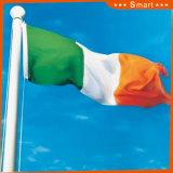 Su ordinazione impermeabilizzare e modello no. della bandiera nazionale dell'Irlanda della bandiera nazionale di Sunproof: NF-051