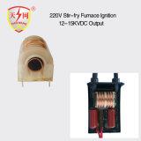 bobina di accesione 15kv per le parti della scintilla del bruciatore a gas del forno/della stufa/gas