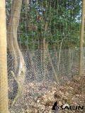 Sailin a galvanisé le poulet que le tissu de fil pour des arbres se protègent