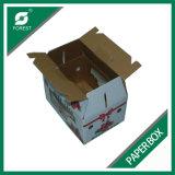 Het Verpakkende Vakje van het Document van de Druk van de douane voor Aardbei Meeneem