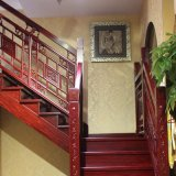 Escadaria espiral de madeira interna do projeto moderno (GSP16-007)
