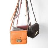 Mini sac de blocage en métal de Corssbody d'épaule de sac de type de mode de fantaisie populaire de loisirs
