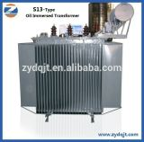 Transformateur immergé dans l'huile triphasé de forte stabilité de courant électrique de 10kv-20kv 500kVA