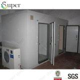 Cámara fría del panel de la PU con la puerta con bisagras/conservación en cámara frigorífica de las frutas