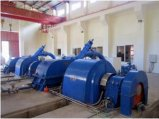 Turbina Genarator di Pelton di alta qualità per la centrale elettrica