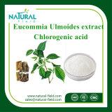 Poeder van het Poeder van het Uittreksel van Eucommia Ulmoides van de Levering van de fabriek Chlorogenic Zure die in Schoonheidsmiddelen wordt gebruikt