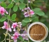 공장 공급 자연적인 플랜트 Lespedeza Capitata 추출 Flavonoids 6%