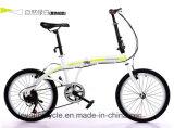 小型バイク(ly60)を折る最も新しい方法デザイン