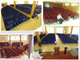 De Zetel van het auditorium met Houten Armsteun en Bevindende Benen