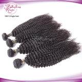 Человеческие волосы монгольской Kinky надкожицы курчавых волос полной естественные
