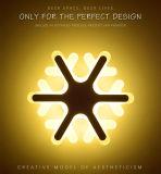Wand-Licht-Lampen-Lichter des Fabrik-Preis-Kristallweihnachteninnen-LED