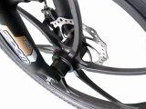 20 Zoll elektrische motorisierte Fahrräder mit CER faltend
