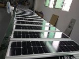 Réverbère solaire avec le système d'énergie éolienne