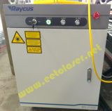 1500W Ipg/Raycus Faser-Laser-Ausschnitt-Gerät (FLX3015-1500W)
