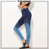 Pantaloni all'ingrosso di yoga delle ghette di sport delle donne della vita dell'OEM alti