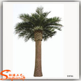 Evergreen décoratif extérieur date artificielle Palm Tree