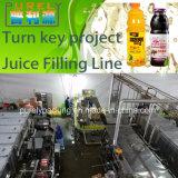 Girar a linha de enchimento do suco fresco do projeto chave