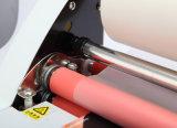 Le constructeur professionnel (WD-V480) chaud et laminent à froid le lamineur
