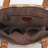 Drucken-Segeltuch-Frauen-kaufenhandtasche (RS-8589B)
