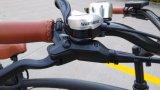 48V 500W F/R 디스크 브레이크 뚱뚱한 타이어 고속 산 전기 자전거