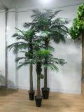 Вал бонзаев ладони искусственного Livistona украшения сада Chinensis