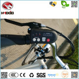 250W En15194はリチウム電池電気都市バイクのペダルの自転車の道のEバイクの安い手段を卸し売りする