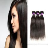 Cheveu 100% droit de Vierge de prolonge de cheveux humains de cheveu brésilien de Vierge