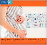 Urin-Schwangerschaft-Prüfung der Frauen-HCG