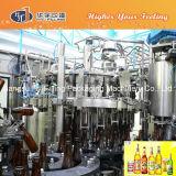 Het Vullende Project van het Bier van de Flessen van het glas