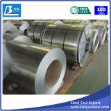 Bobina/strato d'acciaio galvanizzati (GI)