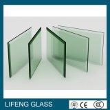 Het Duidelijke Blad Aangemaakte Glas van uitstekende kwaliteit