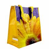 Sacos de compra não tecidos amigáveis reusáveis de Eco (LJ-166)