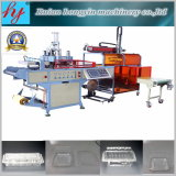 Produce Fruit Tray를 위한 자동적인 Plastic Forming Machine