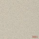 Mattonelle di pavimento del pepe e del sale (3001)