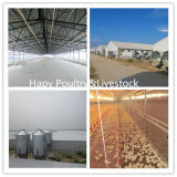 Één Einde Geprefabriceerde Bouw van het Huis van het Landbouwbedrijf van het Gevogelte