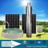 Constructeur submersible de pompe de fontaine solaire d'irrigation de C.C
